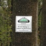 3. Tree Marking Sign - take to Tree Marking program page