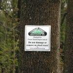 3. Tree Marking Sign - take to Tree Marking program page