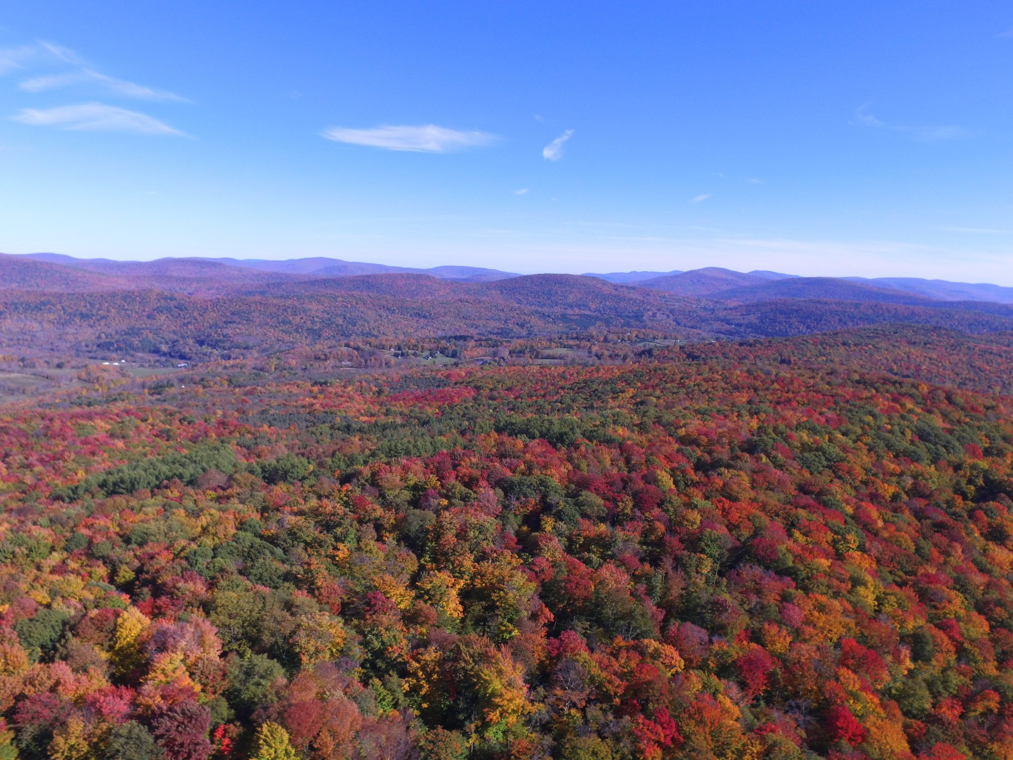 Aerial Photography in Fall from a Drone